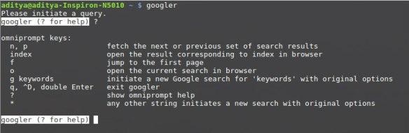 Googler Help. Courtesy of FossBytes